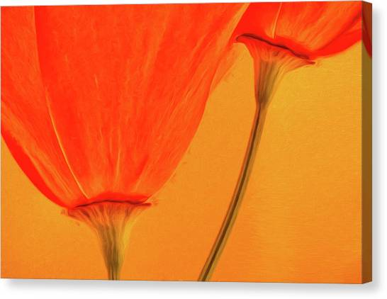 Wildflowers Canvas Print - California Poppies Painterly Effect by Carol Leigh