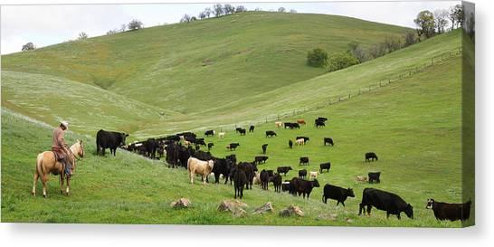 California Ranching Canvas Print