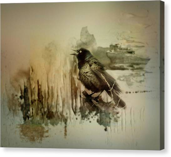 Blackbirds Canvas Print - Call Of The Grackle by Susan Capuano