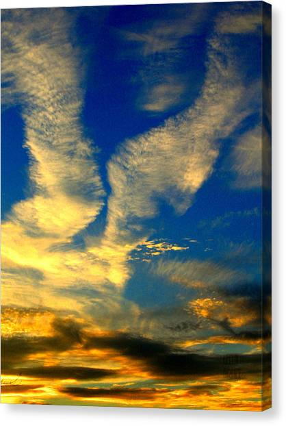 Call To The Sky Canvas Print