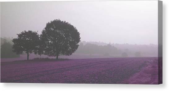 Calm Autumn Mist Canvas Print