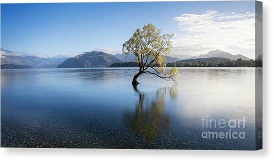 Canvas Print featuring the photograph Calm Morning by Scott Kemper