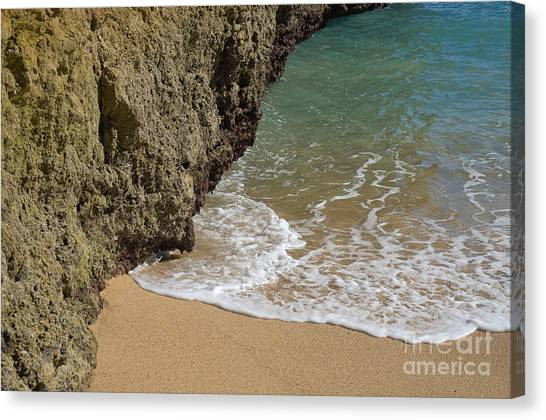 Vegetation Canvas Print - Calm Waves Touching Sand by Angelo DeVal