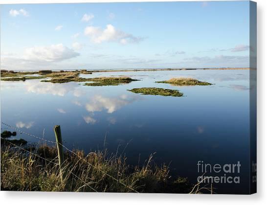 Calm Wetland Canvas Print