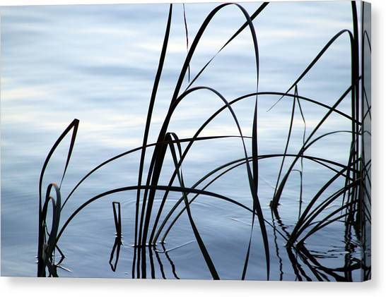 Canvas Print - Calming by Evelyn Patrick
