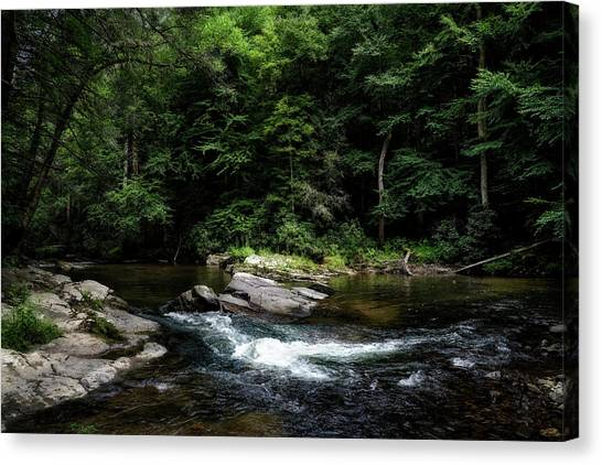 Calming Rapids Canvas Print