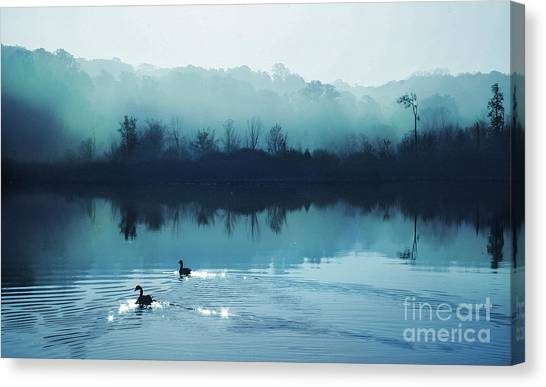 Calming Water Canvas Print by Gina Signore