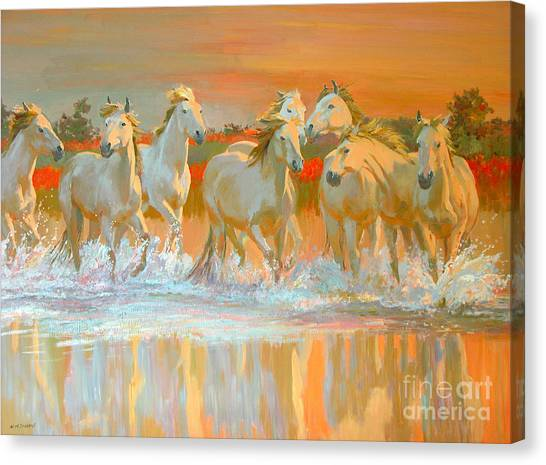 Horses Canvas Print - Camargue  by William Ireland
