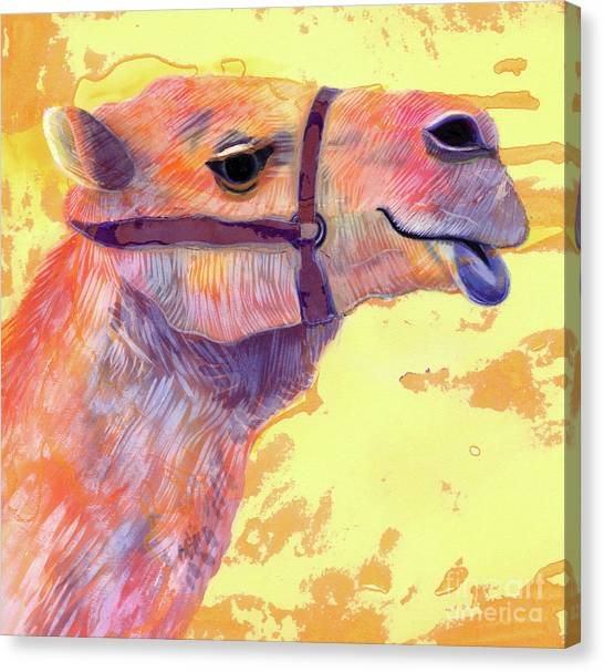 Camels Canvas Print - Camel by Jane Tattersfield