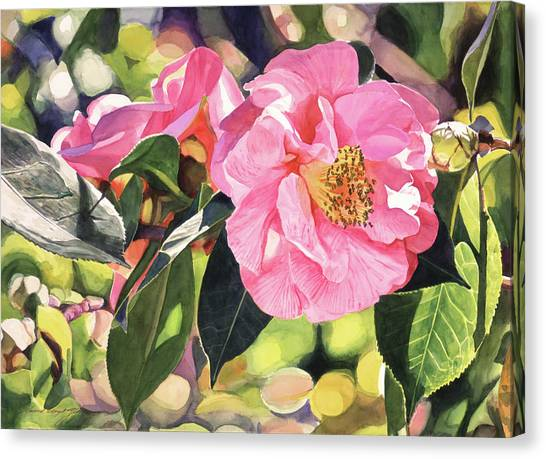Tree Blossoms Canvas Print - Camelia Fantastique by David Lloyd Glover