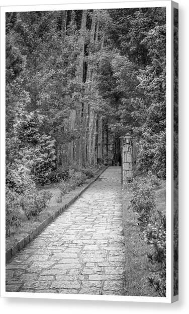 Caminho-mosteiro Das Monjas Beneditinas-campos Do Jordao-sp Canvas Print