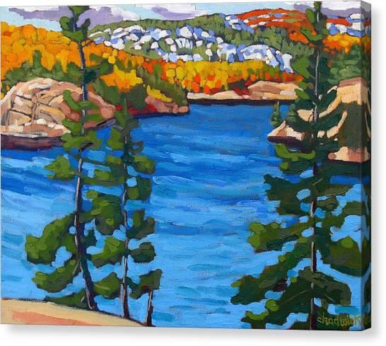 Campsite 77 Canvas Print
