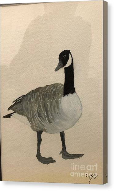 Canvas Print featuring the painting Canada Goose by Donald Paczynski