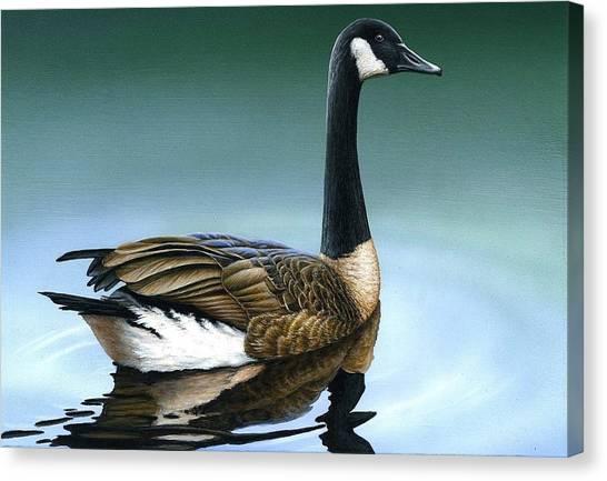 Canada Goose II Canvas Print