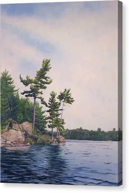 Canadian Shield Sculpture No. 2 Canvas Print by Debbie Homewood