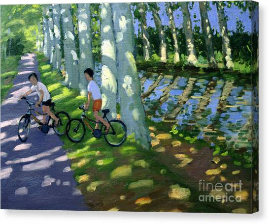Dappled Canvas Print - Canal Du Midi France by Andrew Macara
