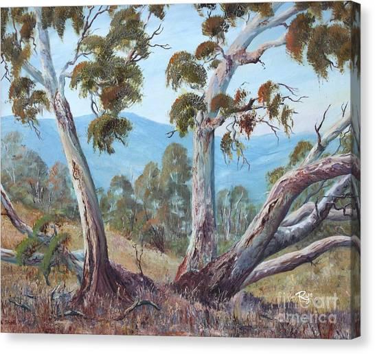 Canberra Hills Canvas Print