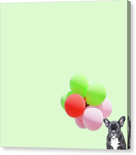 Minimal Canvas Print - Candy Dog by Caterina Theoharidou
