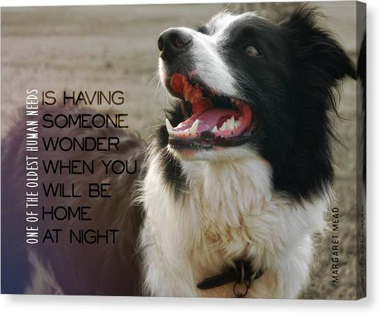 Canine Grin Quote Canvas Print by JAMART Photography