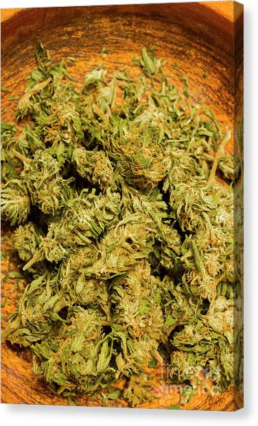 Medicine Canvas Print - Cannabis Bowl by Jorgo Photography - Wall Art Gallery