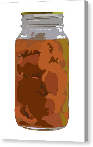 Canned Peaches Canvas Print by Robert Bissett