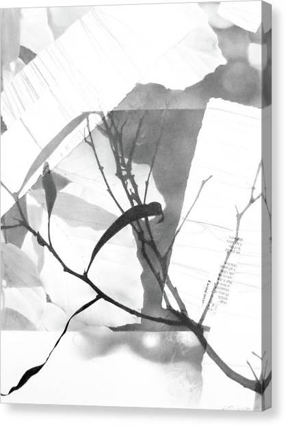 Canopy No. 2 Canvas Print