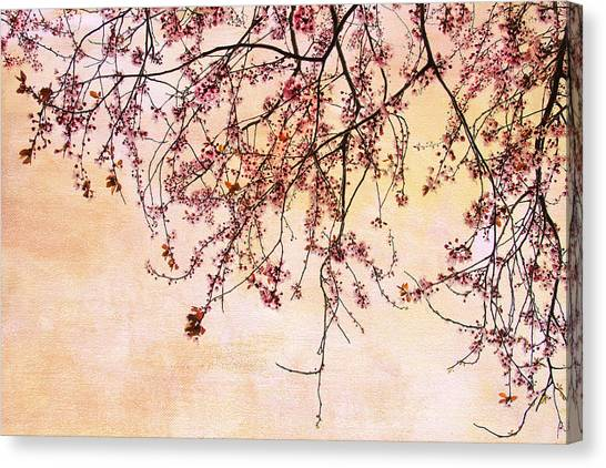 Canopy Canvas Print by Rebecca Cozart