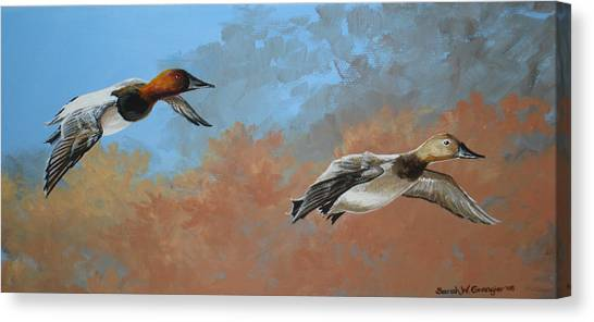Canvasbacks Canvas Print