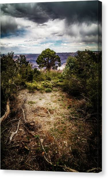 Canyon Sentinel Canvas Print