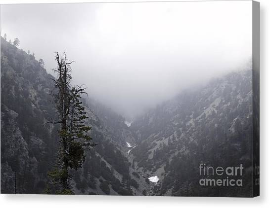 Canyon Canvas Print by Viktor Savchenko