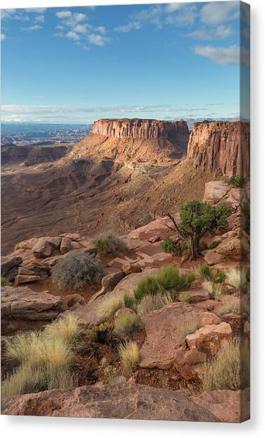 Canvas Print featuring the photograph Canyonlands View by Denise Bush