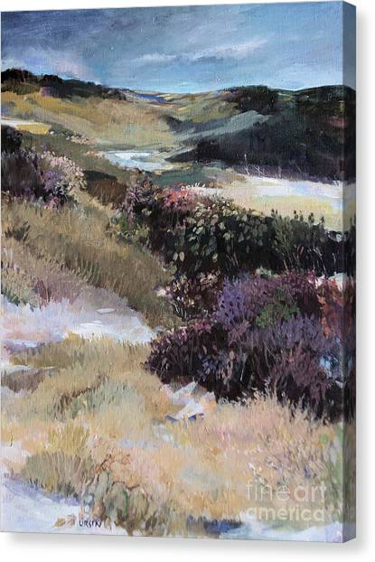 Cape Dune Canvas Print