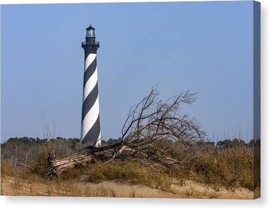 Cape Hatteras Lighthouse With Driftwood Canvas Print