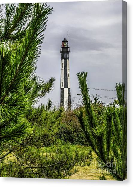 Cape Henry Light From The Dune Canvas Print