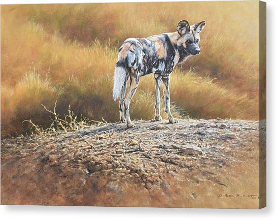 Canvas Print featuring the painting Cape Hunting Dog by Alan M Hunt