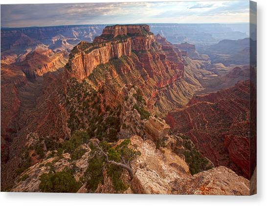 North Rim Canvas Print - Cape Royal Sunset by Mike Buchheit
