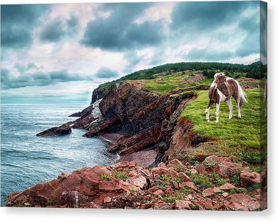 Cape St. Lawrence Canvas Print