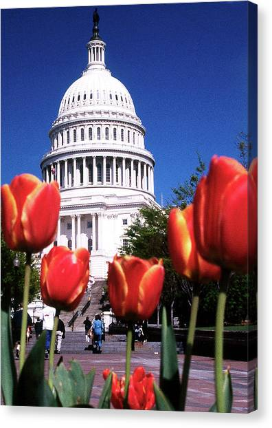 Capital Colors Canvas Print