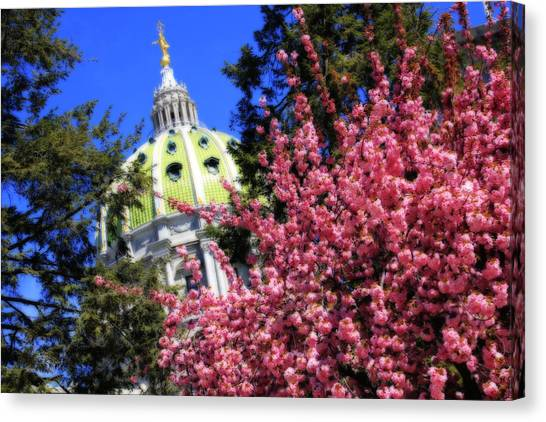 Capitol In Bloom Canvas Print