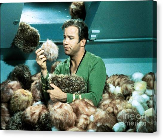 Spock Canvas Print - Captain Kirk Up To His Chest In Tribbles by The Titanic Project
