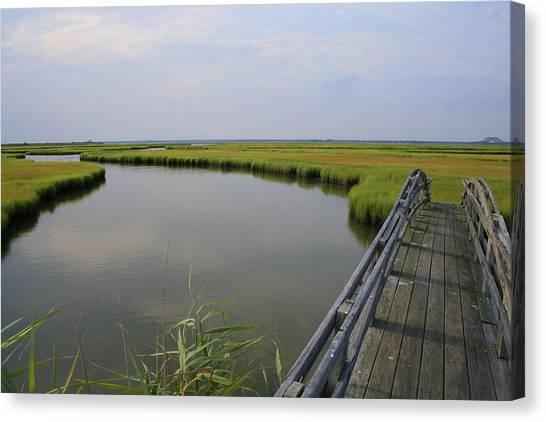 Captree Wetlands Foot Bridge Canvas Print
