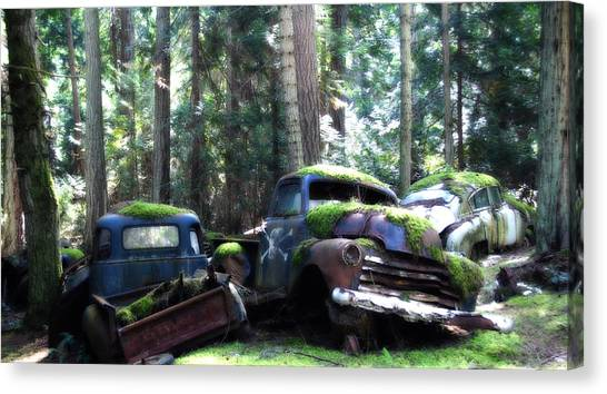 Car Lot In The Forest Canvas Print by Diane Smith