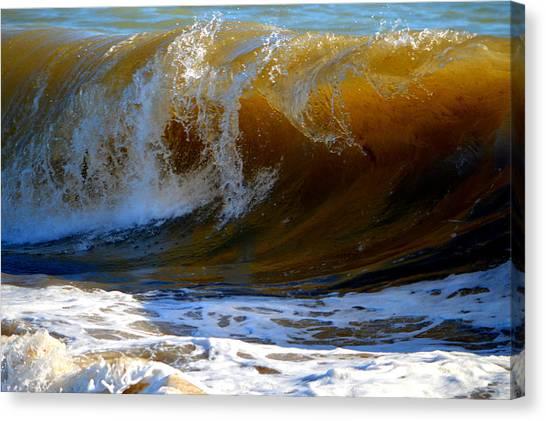 Caramel Swirl Canvas Print
