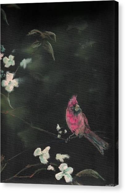 Cardinal 1 Canvas Print by Raymond Doward