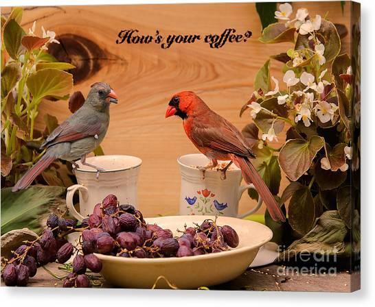 Cardinal Coffee Canvas Print