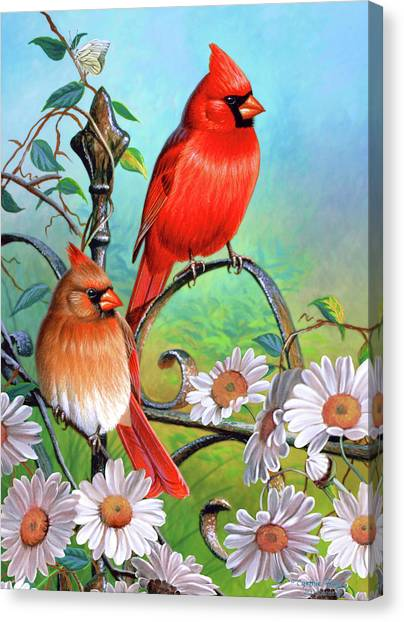Cardinals Canvas Print - Cardinal Day 3 by JQ Licensing