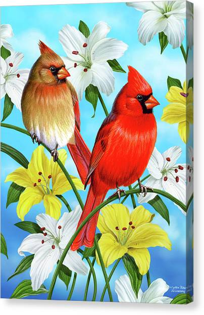 Plant Canvas Print - Cardinal Day by JQ Licensing