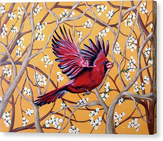 Cardinal In Flight Canvas Print