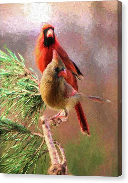 Cardinals2 Canvas Print