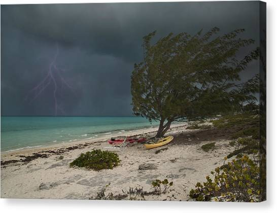 Carribbean Canvas Print - Caribbean Bolt by Betsy Knapp